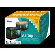 diversa-startup-40-ap1