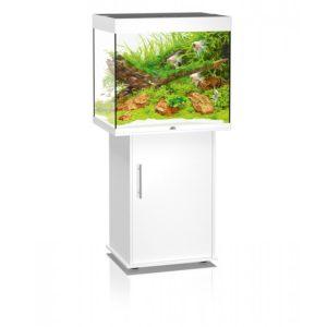 juwel_lido_120_aquarium_fish_tank