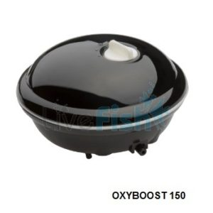 oxyboost_150